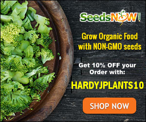 Use code HARDYJPLANTS10 at checkout to save 10% at SeedsNow.com
